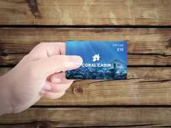 Coral Cabin Gift card graphic design